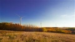 Le parc éolien Bull Creek est situé à environ 20 km au nord-est de Provost et à 60 km au sud-est de Wainwright.