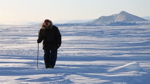 Inuit hunter and guide Elijah Pallituq walks on sea ice in Clyde River checking for seal breathing holes along the cracks in sea ice. Photo by Levon Sevunts.