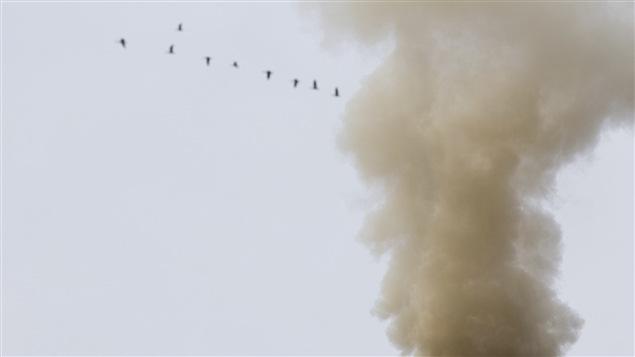 Un groupe d'oiseaux vole derrière une cheminée industrielle.