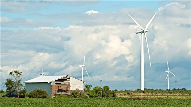 Un parc éolien à l'île Wolfe, près de Kingston, en Ontario.