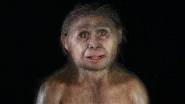 Reconstitution d'une femelle Homo floresiensis