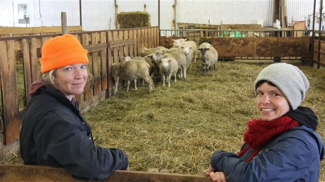 Anouk Préfontaine, Marie-Ève Julien-Denis et les brebis de la ferme Chez Anouk à Mont-Laurier