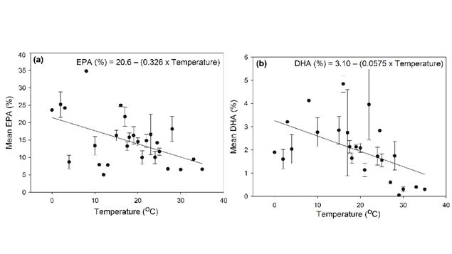 Graph showing that as temperature increases, production of EPA and DHA decreases.