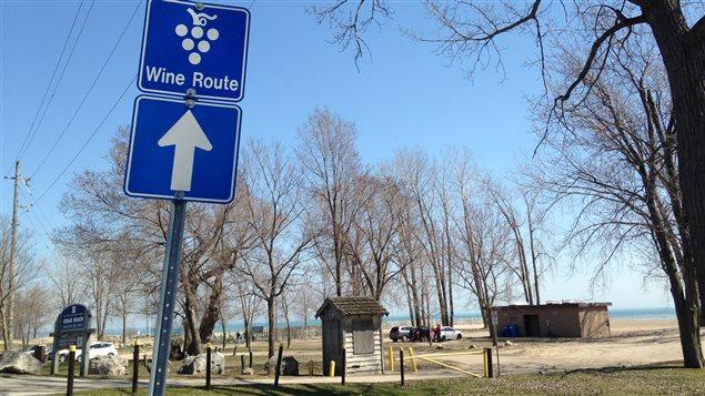 La route des vins à Kingsville