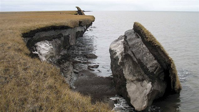 Collapsed blocks of permafrost near Drew Point Alaska. The USGS reporst shoreline erosion along the Arctic coast ranging from 2 to 18 metres per year.