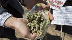 Le sac de cannabis de Ren� Turmel