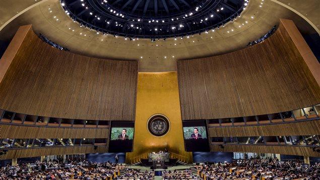 Session Extraordinaire de l'Assemblée Générale des Nations Unies (UNGASS) sur la drogue de 2016