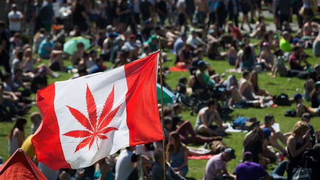 A marijuana leaf substitutes for the maple leaf on a flag flying at the 4/20 cannabis culture celebration in the western city of Vancouver on April 20, 2016.