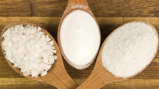 Diferentes variedades de sal