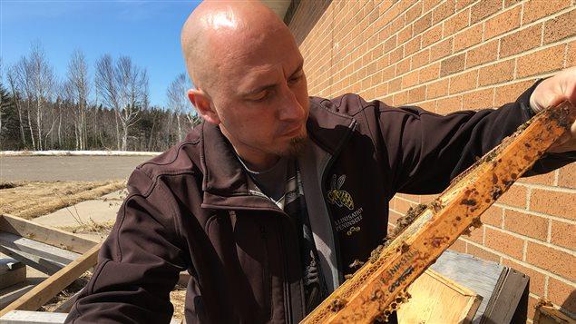 Guy No�l, apiculteur au Nouveau-Brunswick