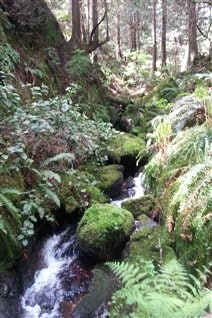 Brooks and rivers are some of the useful, natural assets being catalogued by the town of Gibsons.