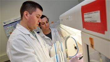 Professor James Uniacke and PhD candidate Sara Timpano conducting cell biology experiments ad the much lower *physiological* oxygen levels experienced by cells in the body as opposed to most experiments historically conducted at atmospheric levels of oxygen.