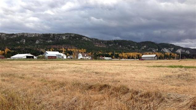 Une terre agricole dans le Bas-Saint-Laurent