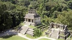 La cit� maya de Palenque, dans l'�tat mexicain du Chiapas