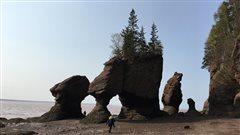 Les rochers de Hopewell en forme de pots de fleur
