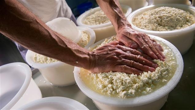 Un homme s'adonne à la confection de fromage.