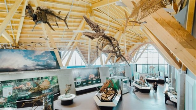 This new museum complex may not be in a major urban area, but its location was strategically chosen: it's the spot where the horned dinosaur Pachyrhinosaurus lakustai once thrived, says Conde Nast Traveler magazine