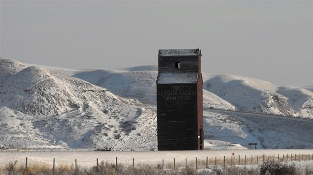 The abandoned elevator at Dorothy, Alberta, the railway left, leaving the elvator with no purpose ,and Dorothy became a ghost town.