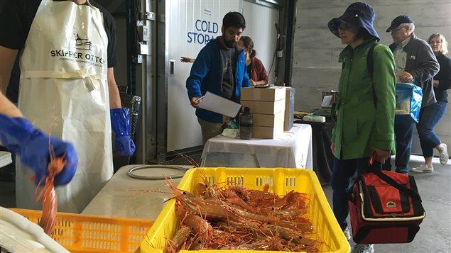 Des consommateurs achètent des crevettes tachetées du Pacifique fraîchement pêchées