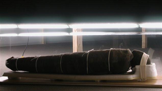 Vue de la momie dans l'exposition Sarkis. 2600 ans après 10 minutes 44 secondes, 2003, Galerie de l'UQAM