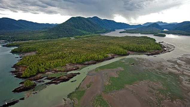 Protecting the environment is a priority for the new government of British Columbia.