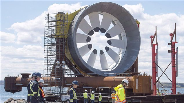 The turbines to be installed in the Bay of Fundy are five storeys high and weigh 300 tonnes.