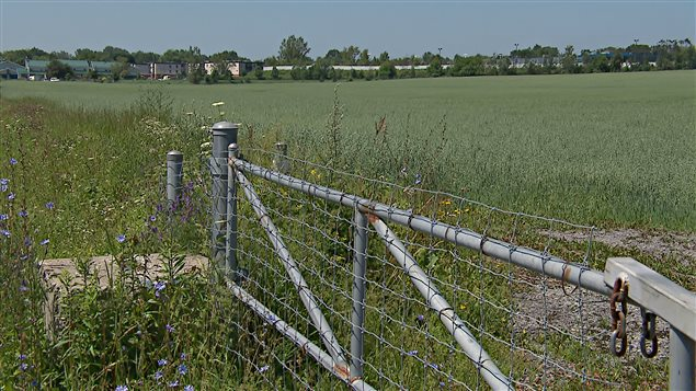 L'UPA relève que le projet de loi 85 du gouvernement provincial menace directement 2000 ha de terres destinées à l'agriculture dans la Communauté métropolitaine de Montréal.