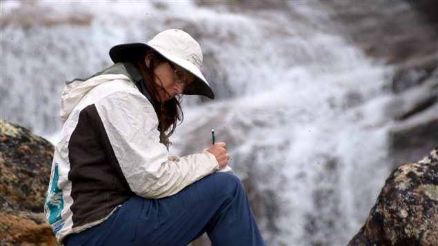 Researcher Lynn Gillespie took notes on a similar expedition on Victoria Island in the Canadian Arctic archipelago in 2007.