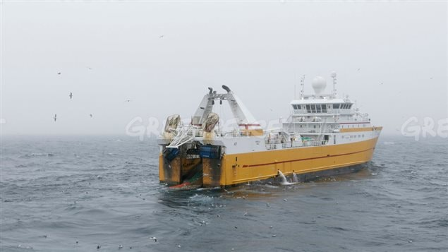 The bottom trawler 'Kirkella' operates in the Barents Sea off the east coast of Svalbard, located about 500nm (950km) north of Norway on July 7, 2016. Greenpeace says fishing is now taking place in areas further north than previously as ice retreats