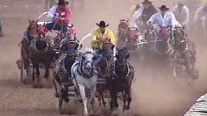 A horse had to be euthanized after it broke a leg during this chuckwagon race in 2009. We see three chuckwagons bunched up as they approach a turn on the track. Dust flies out behind the wagons that are driven by men wearing black cowboy hats.