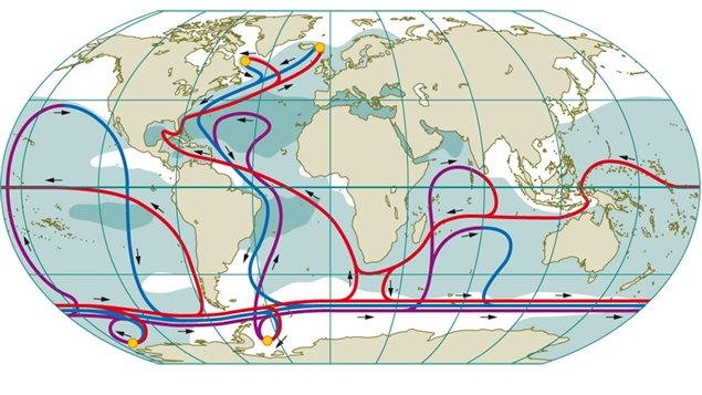 The ocean *conveyor* system of deeper current flows