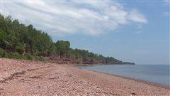 À la plage de Hope, on se croirait sur une île exotique.