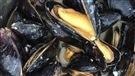 Des découvertes gourmandes à Carleton-sur-Mer, en Gaspésie