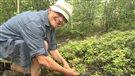 Les bleuets, une histoire de famille en Abitibi-Témiscamingue