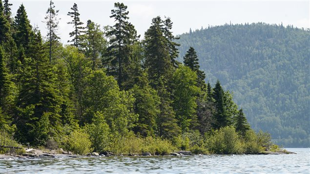 This photo of Powder Island in Ontario illustrates a typical Canadian landscape.