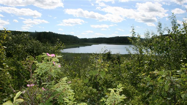 The Nature Conservancy of Canada hopes to encourage people to visit lands it has acquired such as the Upper North Saskatchewan River Basin in the western province of Alberta.