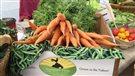 Un festival culinaire pour célébrer la gastronomie du Yukon