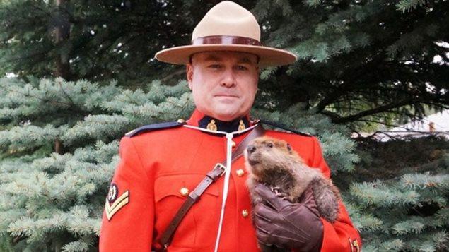 L'agent de la Gendarmerie Royale du Canada, Jason Pinder, photographié avec un bébé castor récemment sauvé par le centre de protection de la faune sauvage Salthaven Wildlife Rehabilitation Centre