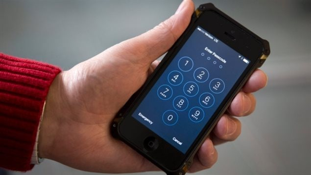 The issue of whether police should be able to demand passwords gained traction after U.S.  authorities seized a cell phone in the San Bernardino, California massacre.