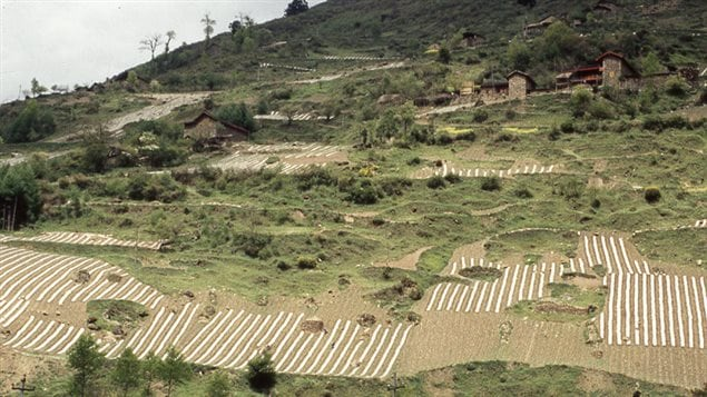 In indigenous Qiang villages in China hillsides are deforested to make way for agriculture.