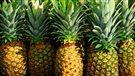 Une Sherbrookoise trouve un serpent caché dans un ananas