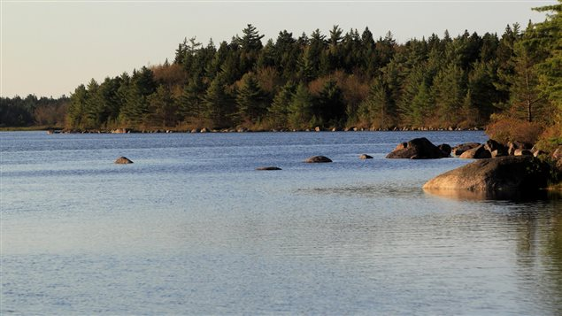 Land around the Tusket River in Nova Scotia was acquired and is protected by the Nature Conservancy of Canada.