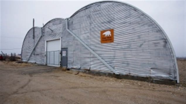 The Polar Bear Compound in Churchill, Man., also known as the 'polar bear jail' where problem bears are housed before being relocated north up the Hudson coastline, or held until freeze up when they can be let out to go onto the ice. Inside are a number of *cells* where up to 30 bears can be kept