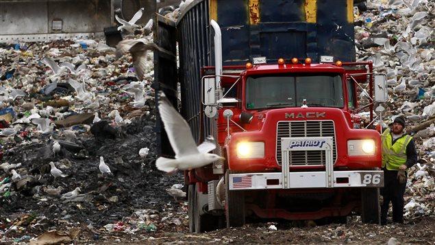 Un camion d'ordures au dépotoir