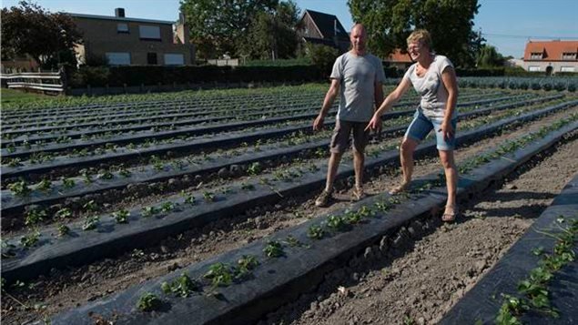 Mr. Luc Snauwaert and his wife, Mrs. Brigitte De Meyer, farmers near Moerkerke, Belgium, explain where Private Duncanson's remains were found in their fields, near Moerkerke, Belgium, on September 13, 2016.
