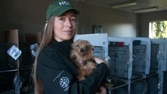 Rebecca Aldworth is the executive-director of Humane Society International- Canada