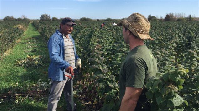 Le travailleurs mexicains, Ariseo Fuentes et l'agriculteur Mitch Deschâtelets