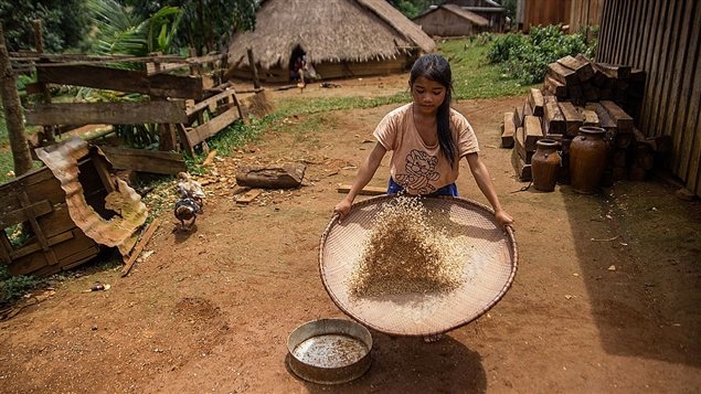 A young girl from the Bunong indigenous group carries out her chores on August 8, 2014 in Mondulkiri, Cambodia.