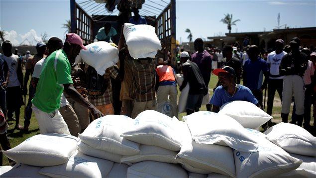 En Haïti, le riz est devenu une denrée rare dans les zones dévastées par l'ouragan Matthew
