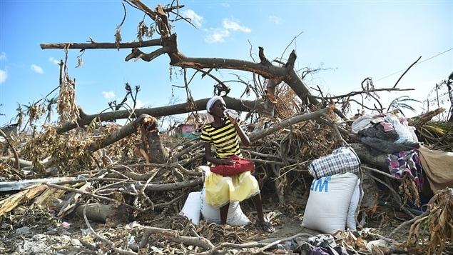 Une femme s'asseoit sur un tronc d'arbre après avoir reçu de la nourriture d'une mission des Nations unies, dans le sud-ouest d'Haïti.